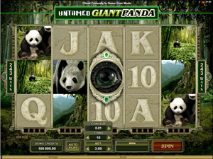 Untamed: Giant Panda screenshot
